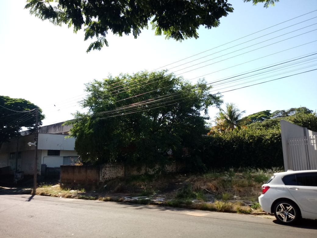 LOTE 32338