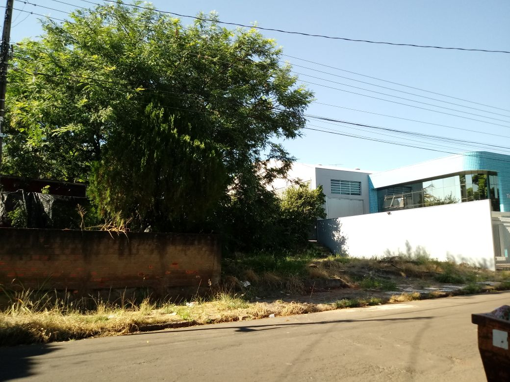 LOTE 34795