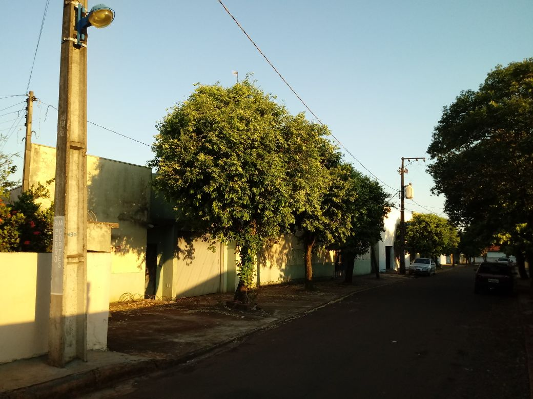 LOTE 32056