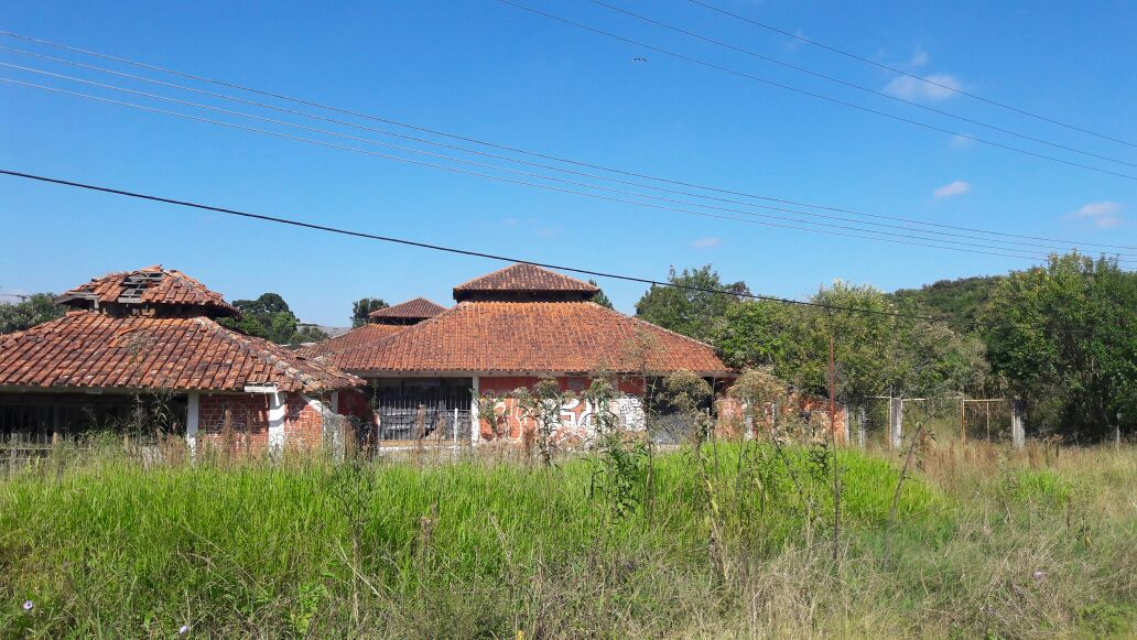 LOTE 39228