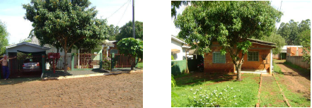 LOTE 32297