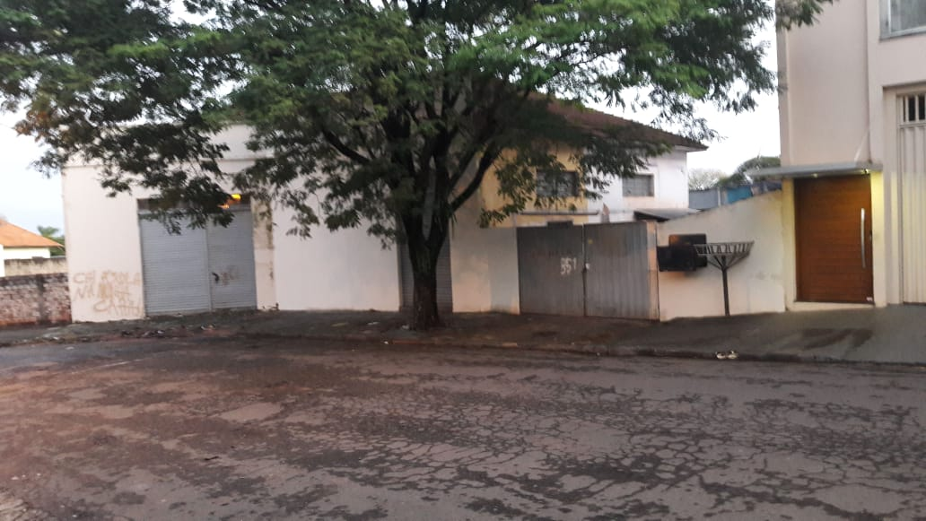 LOTE 32339