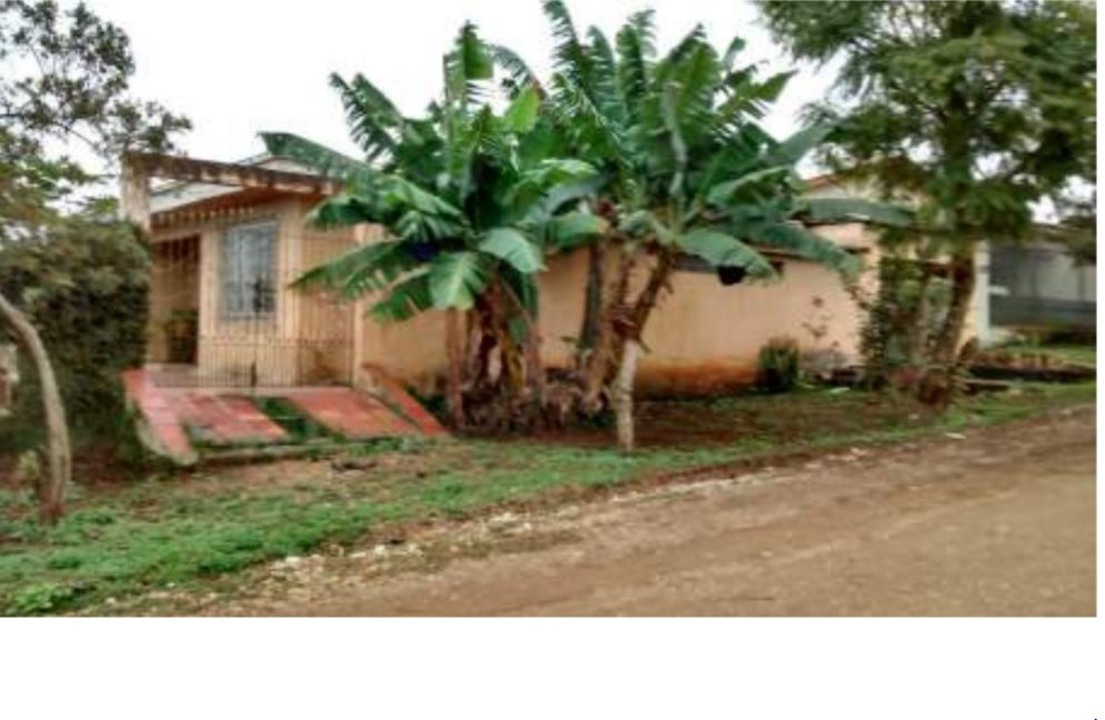 LOTE 32617