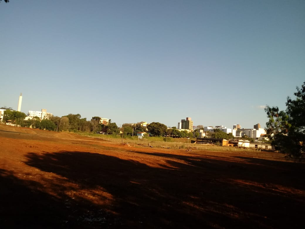 LOTE 32487