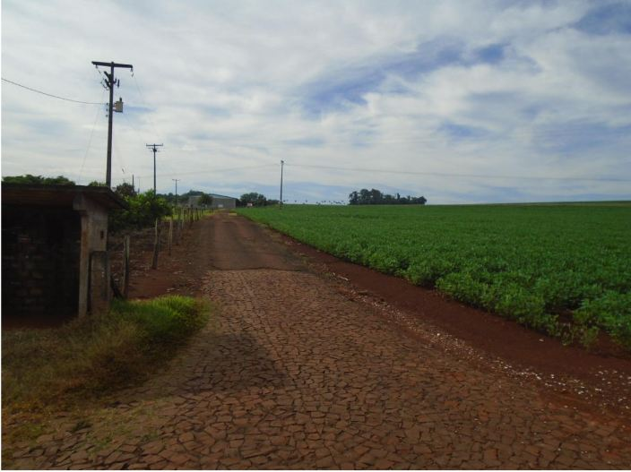 LOTE 32724