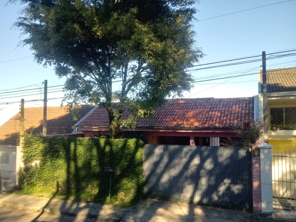 LOTE 52041
