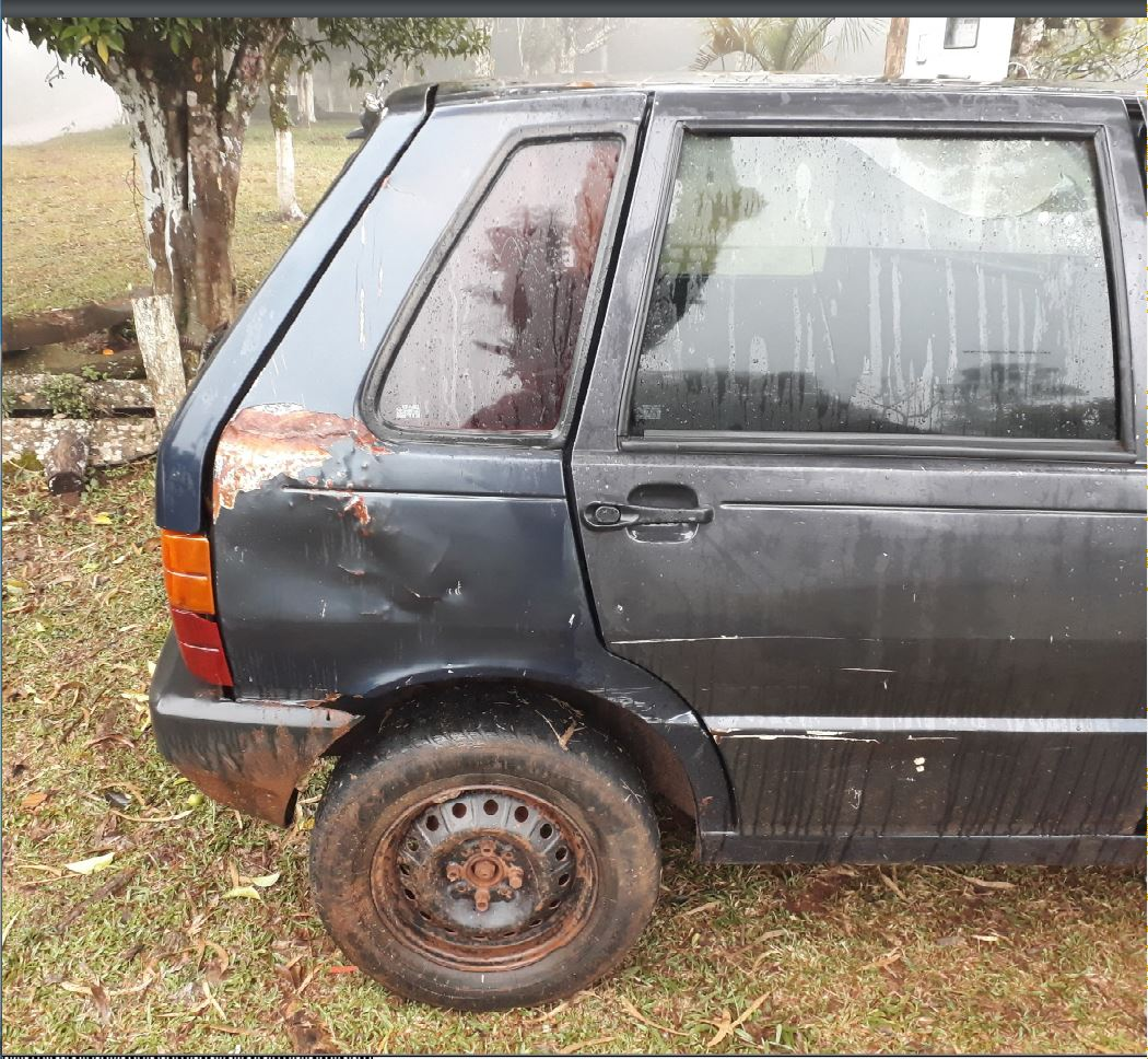 LOTE 36450
