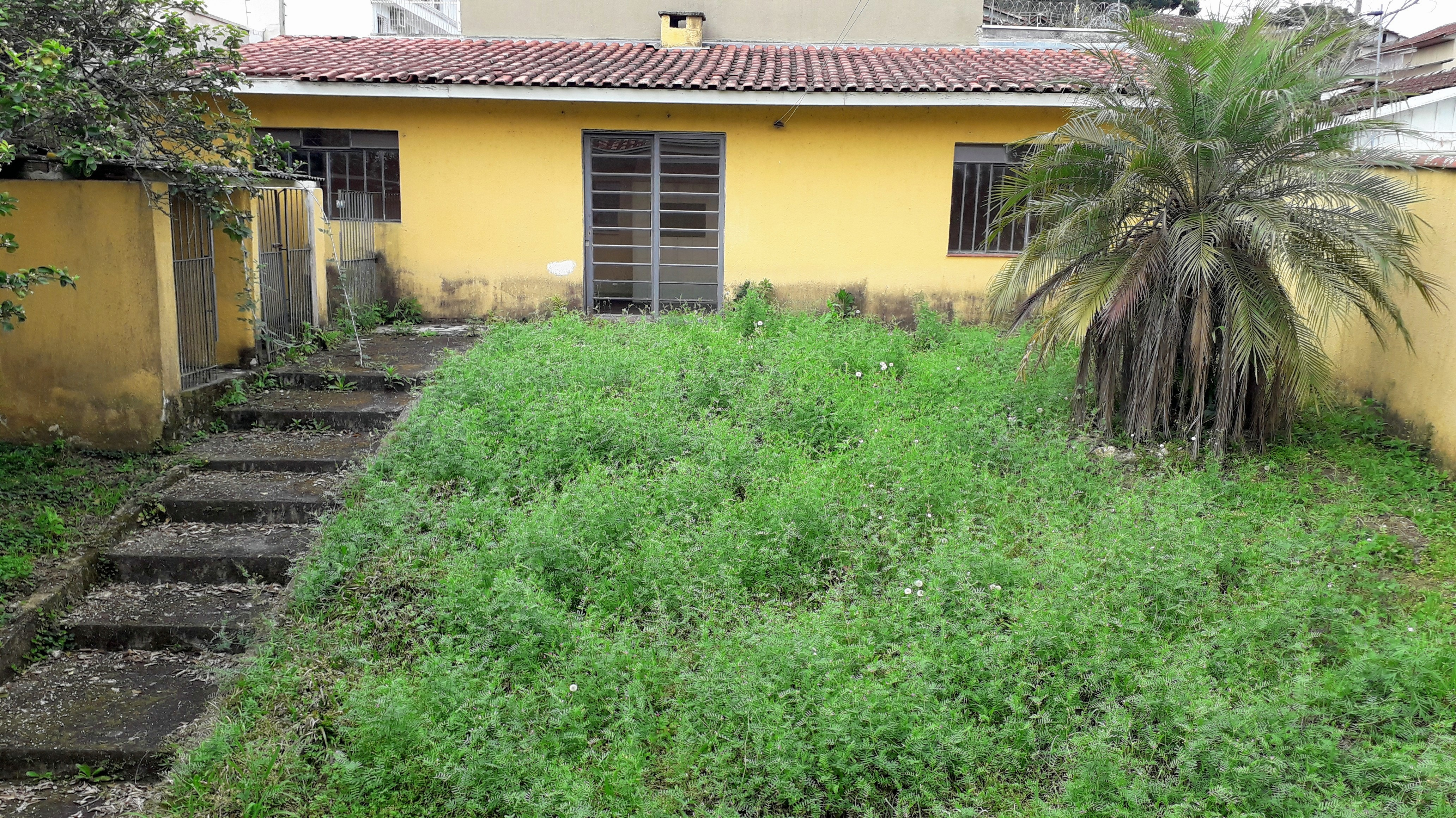 LOTE 39202
