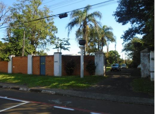 LOTE 42711