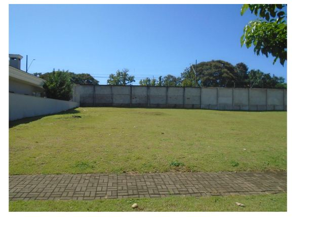 LOTE 42927