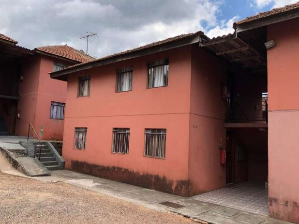 LOTE 49169