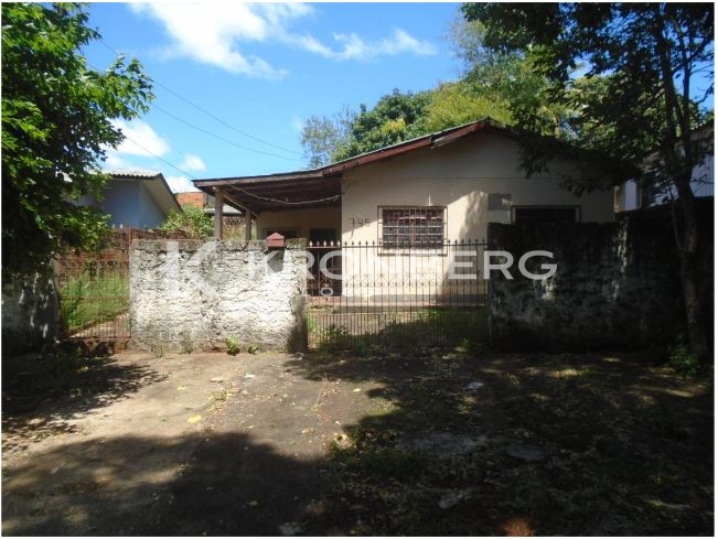 LOTE 49539